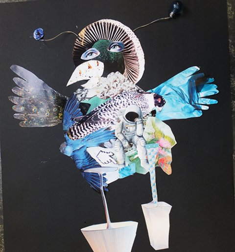 collage,vogel,knip,plak,cursus